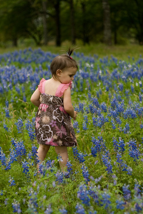 Daughter in the Bluebonnets